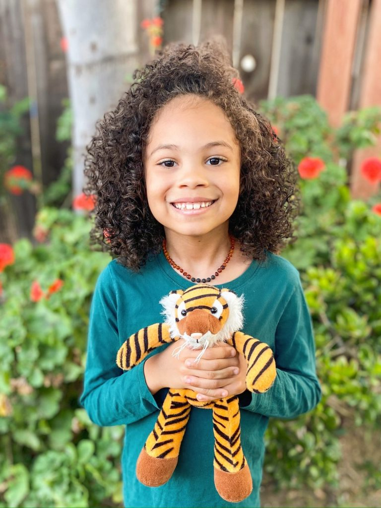 photo of young boy holding a stuffed tiger